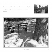 DIPPING INTO LIGHT; A Lifetime of Photography, p. 19