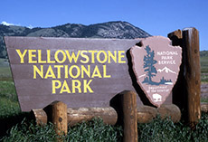 po_Yellowstone