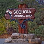 po_Sequoia-National-Park